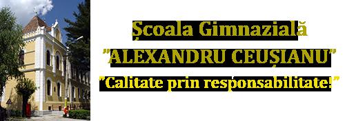 """Școala Gimnazială """"Alexandru Ceușianu"""""""